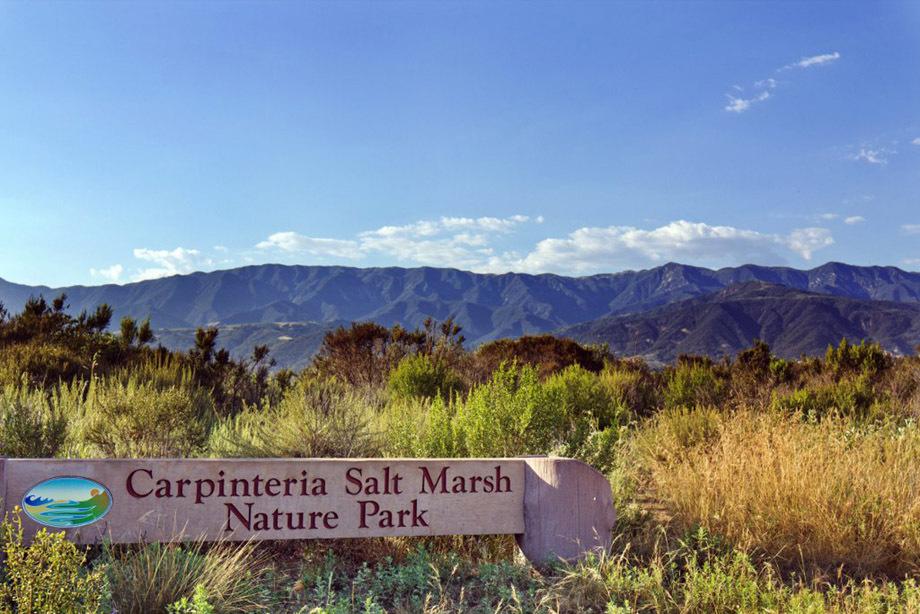 carpinteria-salt-marsh-1