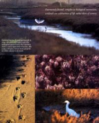Santa Barbara Magazine 1995