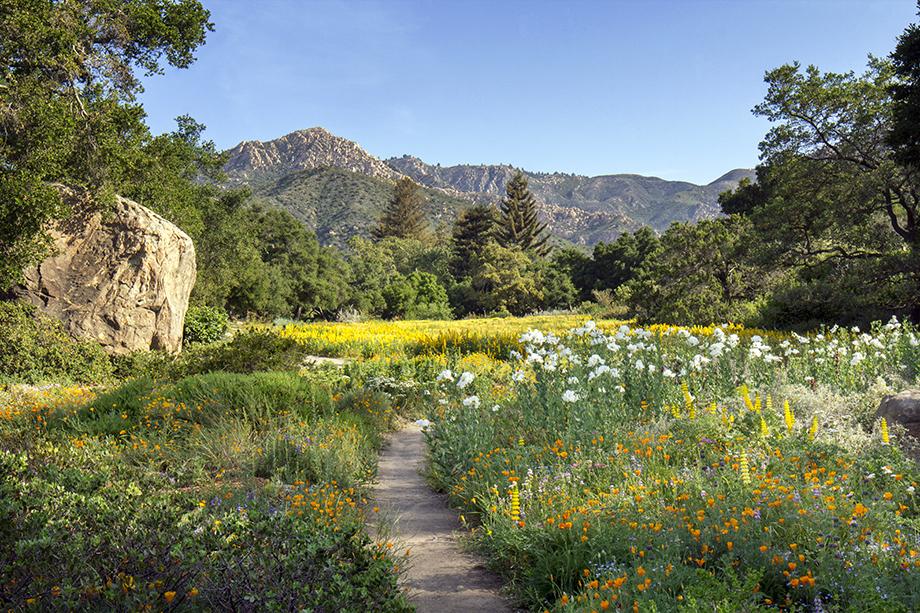 Van-Atta-Associates-Santa-Barbara-Botanic-Garden-05 - Van Atta ...